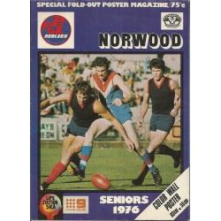 Norwood FC: Seniors 1976